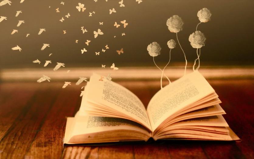 knygos ir geles