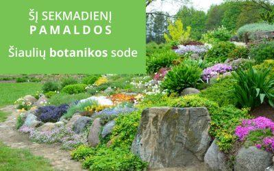 Pamaldos Šiaulių botanikos sode